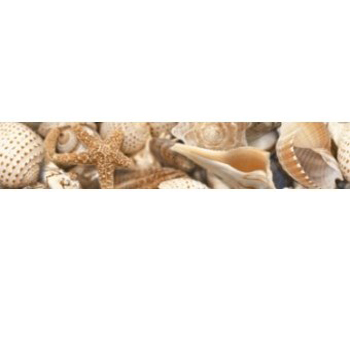 Фриз Golden Tile Sea Breeze Shells бежевый 30х6