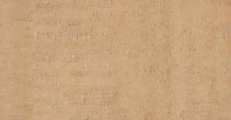 Пробковый пол Wicanders Pure Fashionable Camel 31/4 мм C98O001