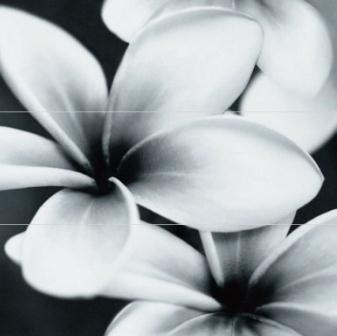 Декор Opoczno Pret A Porter Flower Grey Composition 75×75