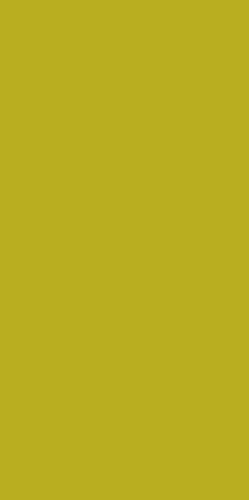 Плитка настенная Paradyz VIVIDA Verde 30 x 60