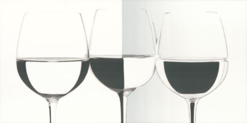 Декор настенный Paradyz VIVIDA Bianco VINE 30 x 60
