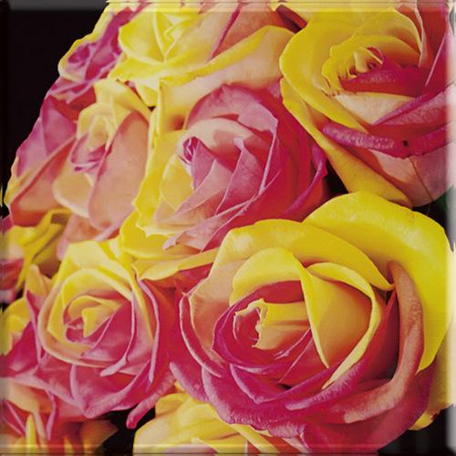 Плитка настенная Paradyz SZKLANE 20 x 20 Kwiaty
