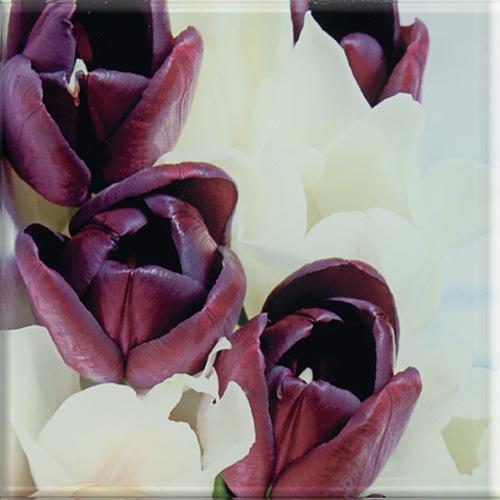 Плитка настенная Paradyz SZKLANE 20 x 20 Tulipany