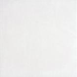 Плитка напольная Rako Concept Plus белый DAA3B599 33×33