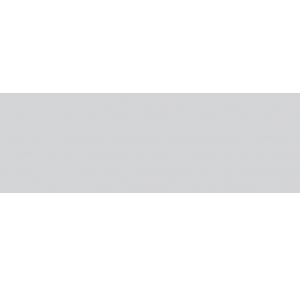 Плитка настенная Rako Concept Plus светло-серый WAAVE012 20×60