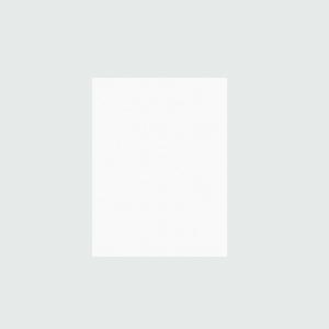 Плитка настенная Rako System белый WAAG6000 20×25