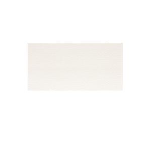 Плитка настенная Rako Trinity белый WADMB090 20×40