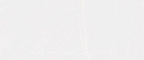 Плитка настенная Argenta Burlington Bone 25×60