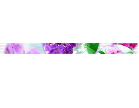 Фриз Myr Ceramica Fly Violeta 891 Spa 4,x60