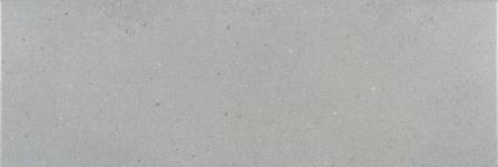 Плитка настенная Myr Ceramica Camden Gris 25×75