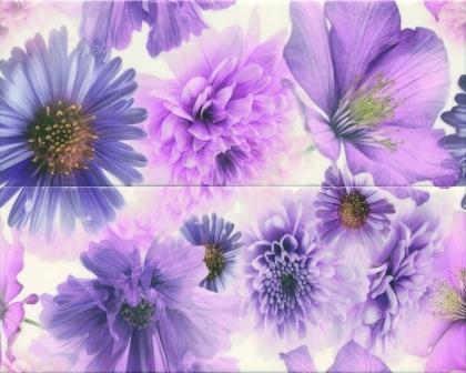 Декор Ceramika Konskie Marina Garden Violet Inserto ceram 20×50