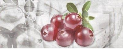 Декор Ceramika Konskie Napoli Fruit 1 Inserto ceram. 20×50